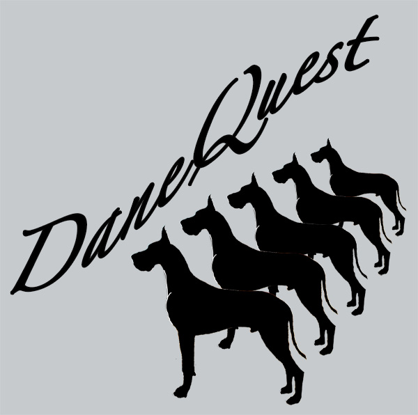 Dane Quest Logo